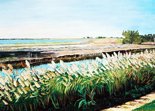 Derrière les Stes-Maries-de-la-mer