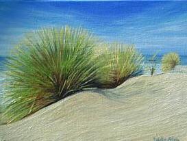 Oléron : Dune
